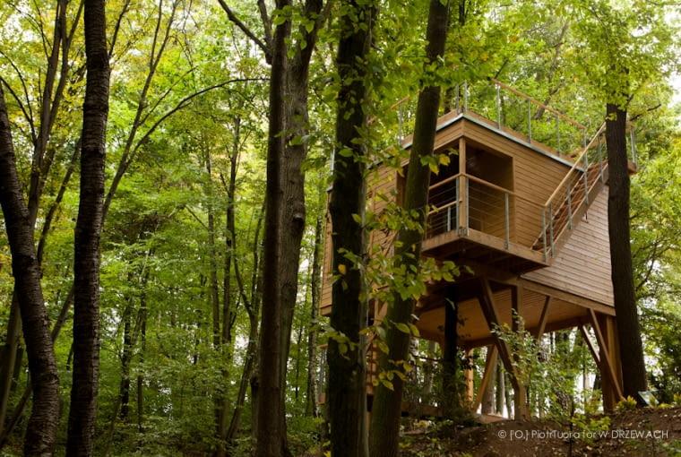 Apartamenty w drzewach w Nałęczowie