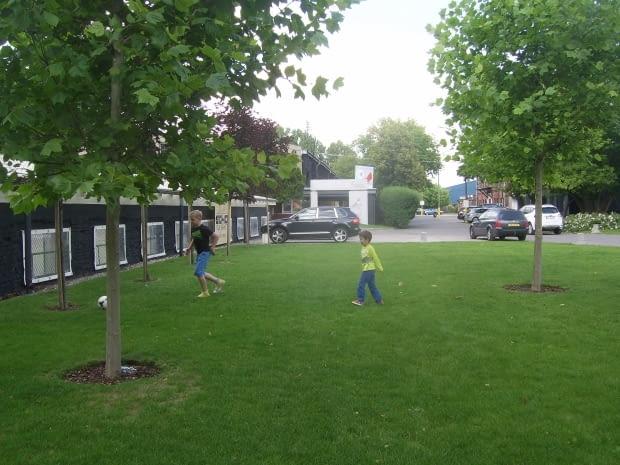 Wypielęgnowane trawniki , gdzie można tu nawet zagrać w piłkę.