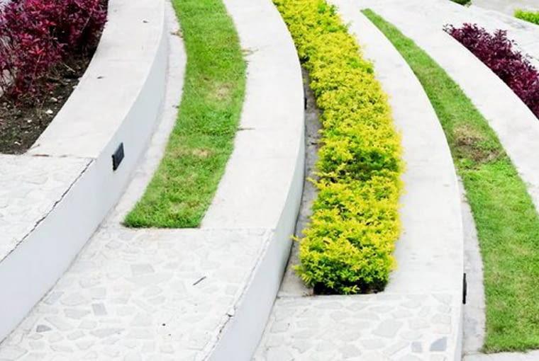 Kolorowe dywany. Rośliny okrywowe, zdjęcia ogrodów