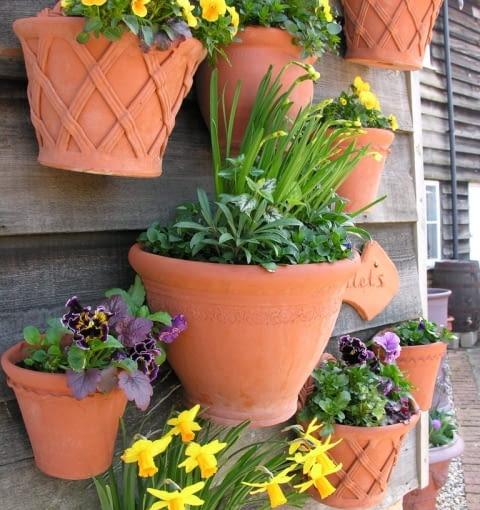 Wiosenne donice pełne kolorowych kwiatów