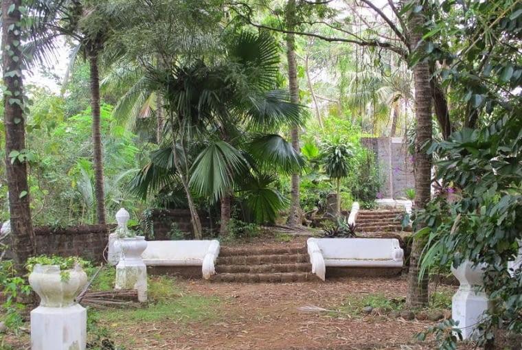 W dalszej części ogrodu dominuje roślinność charakterystyczna dla tropikalnej dżungli