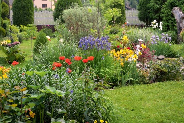 Praca w ogrodzie jest dla mnie odskocznią od obowiązków zawodowych, najlepszym sposobem, by się zrelaksować i zapomnieć o codziennych problemach.