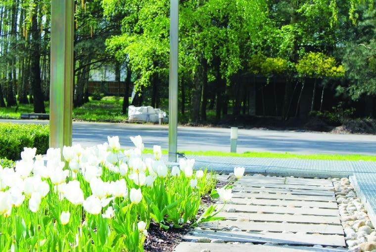Pergole ze stali nierdzewnej do ciekawe rozwiązanie do nowoczesnych ogrodów. Można z nich stworzyć ozdobę długich ścieżek