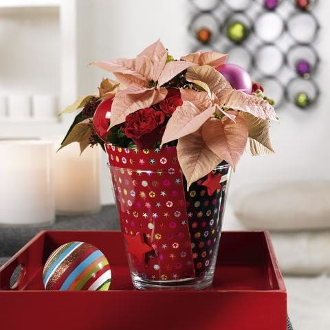Ozdoby i dekoracje świąteczne na Boże Narodzenie. Gwiazda betlejemska - wersja nowoczesna