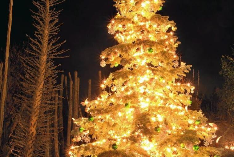 Świąteczna dekoracja ogrodowej choinki