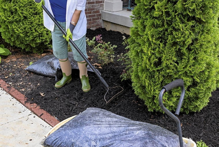 Kompost rozłożony na rabacie chroni glebę przed utratą wilgoci, co ma duże znaczenie np. w przypadku żywotników.