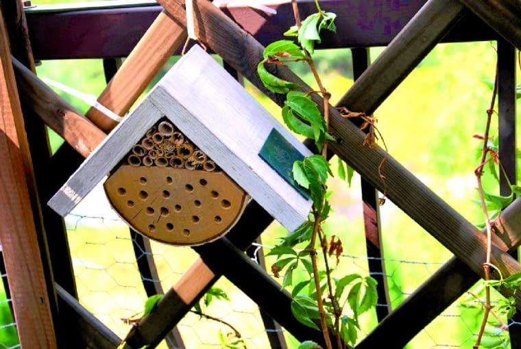 Aby zwabić owady na trzecie piętro naszego bloku, powiesiłam dla nich na balkonowej kratce mały domek.