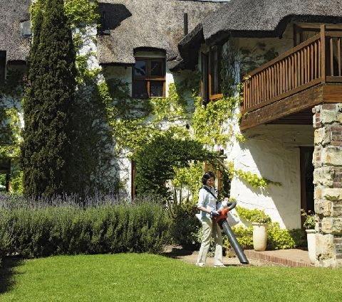 sprzątanie liści,trawnik,pielęgnacja ogrodu,ogród