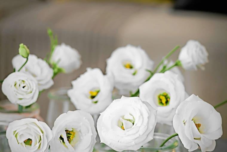 Kwiaty na balkonie.