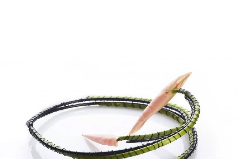 Niezwykła kolia z pędów anturium wzmocnionych sztywnym czarnym drutem i starannie oplecionych cienkim czarnym drucikiem