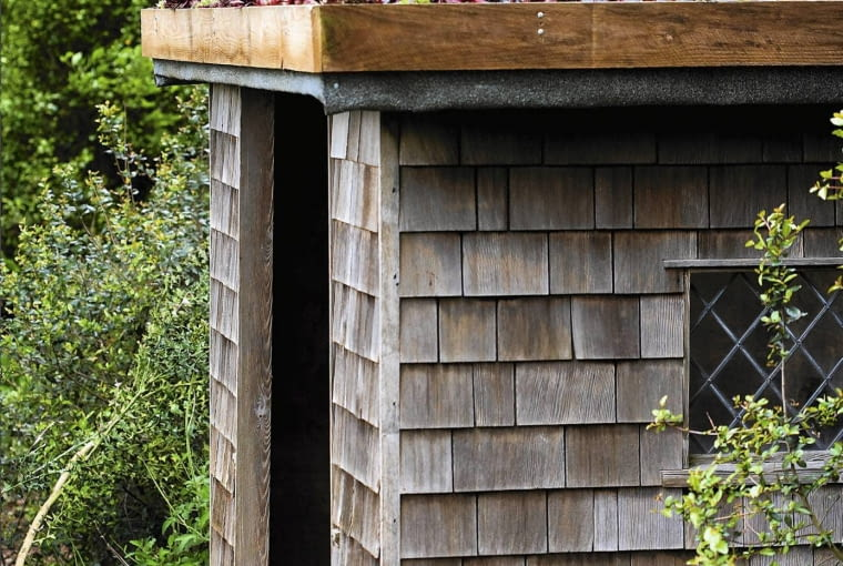 Green roof SLOWA KLUCZOWE: Baum Garten Gartenanlage Geb ude Natur Pflanze Schuppen Tag Wachstum au?en bewachsen drau?en ´berwuchert Geb ude au?en drau?en ´berwuchert Geb ude au?en drau?en ´berwuchert Hochformat