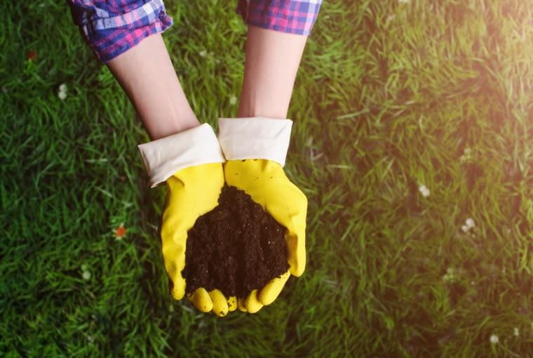 Dobra ziemia w ogrodzie - jak ją rozpoznać?