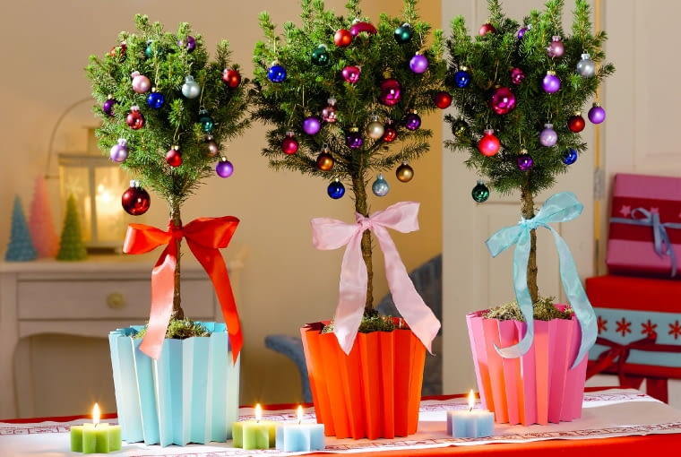 LSmall potted Christmas trees embellished with colourful Christmas tree balls