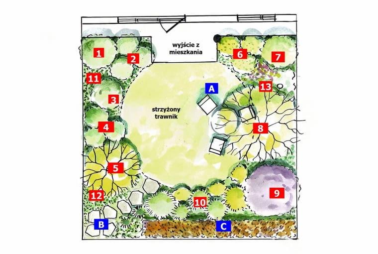 Rośliny w projekcie
