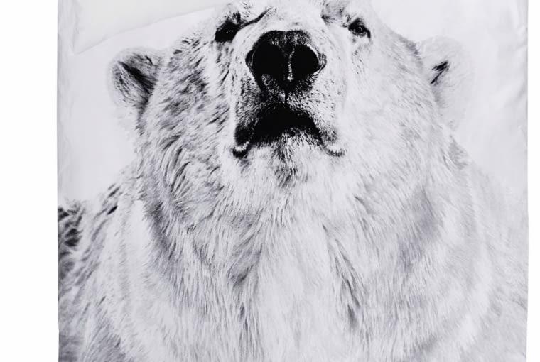 Pościel z delikatnej bawełny z nadrukiem fotograficznym niedźwiedzia polarnego; na poduszce jest tekst opisujący jego zwyczaje. Materiał wyprodukowany w stu procentach bez użycia szkodliwych substancji. Wym. 140 x 200 cm; 50 x 70 cm, scandidecor.pl, 395 zł