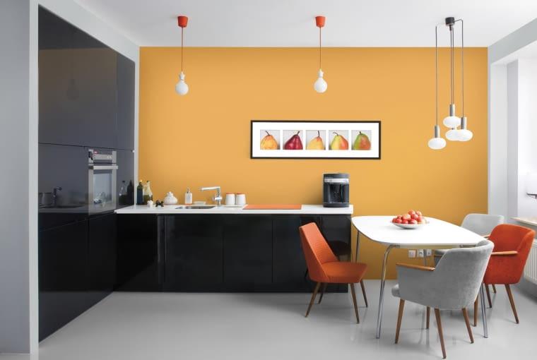 Biostatyczna farba do wnętrz Śnieżka Kuchnia-łazienka.