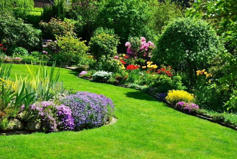 Zaplanuj swój ogród