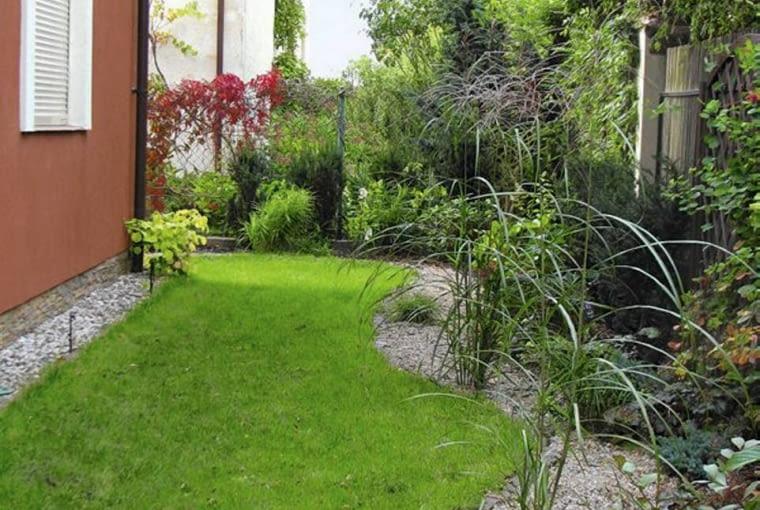 C| Projekt ogrodu. Wąski pas od strony zachodniej udekorowały miskanty i kolorowe odmiany berberysów. W narożniku kwasolubny zakątek z azaliami