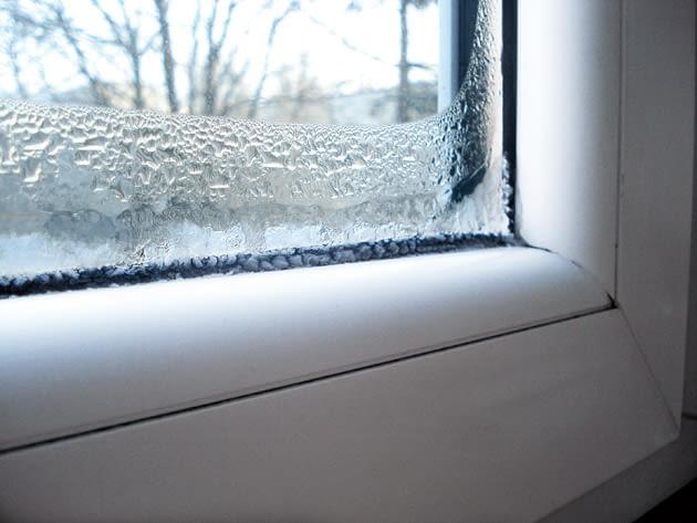 zaszronione okna