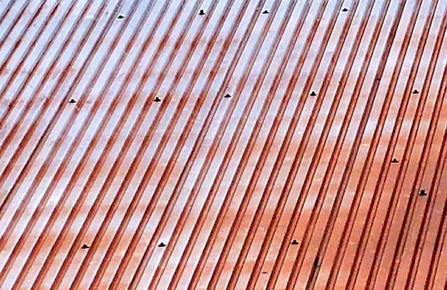 Wyblaknięte pokrycie z blachy trapezowej - może się to zdarzyć nawet na pokryciu z blachodachówki dobrej jakości