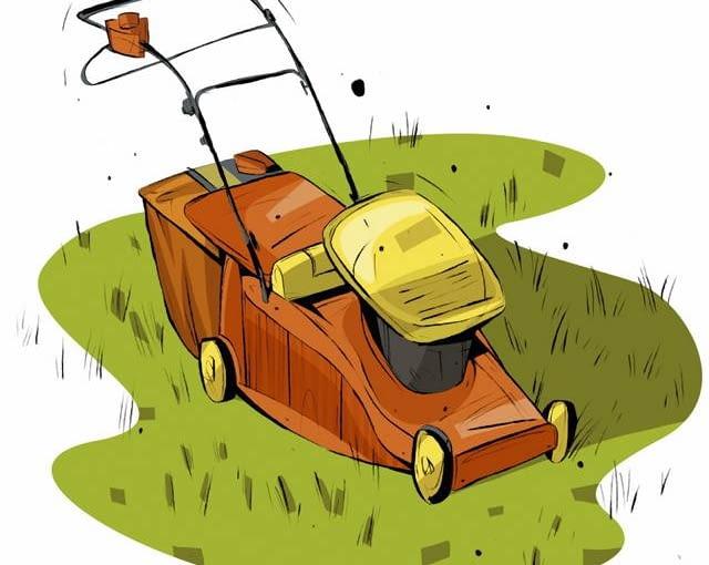 Koszenie trawy to podstawowa czynność latem