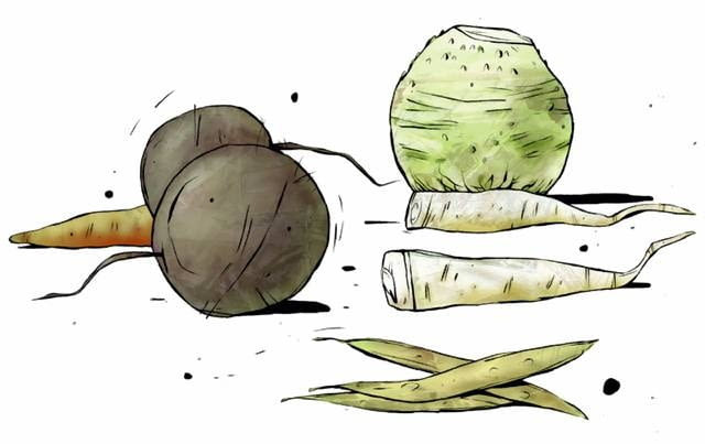 Warzywa wybieramy zanim nadejdą przymrozki, bo nawet lekko przemrożone szybko gniją