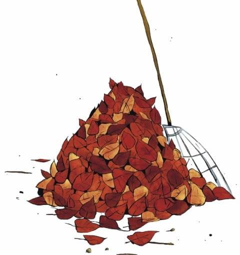 Do sprzątania liści z niewielkich powierzchni wystarczą miotłograbie, czyli przyrząd z wachlarzowo ułożonych płaskowników lub drucików - często o regulowanym rozstawie.