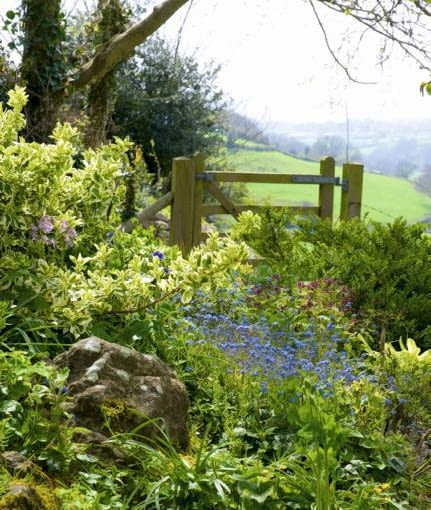Spring flowers and gate with view across countryside