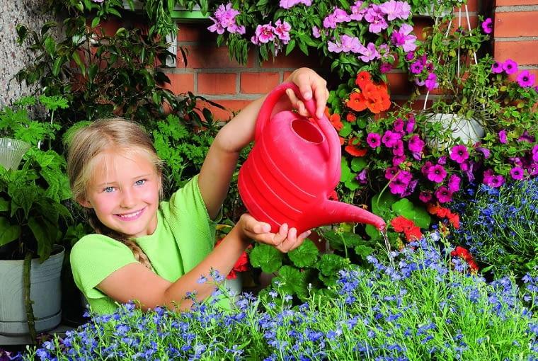 Rośliny podlewajmy tak, by nie moczyć ich kwiatów i liści - najlepiej wieczorem lub rano, gdy ziemia w skrzynkach nie jest mocno nagrzana/fot. alexkatkov shutterstock