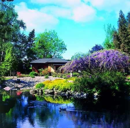 W północno-wschodnej części znajduje się ogród herbaciany z tradycyjną poczekalnią (<i>machai</i>), i herbaciarnią (<i>azumaya</i>).