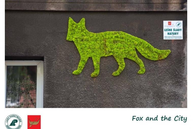 Zielone murale w Łodzi