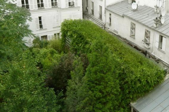 """""""Lost in Paris"""" House, francja, paryż, architektura ekologiczna, dom jednorodzinny"""