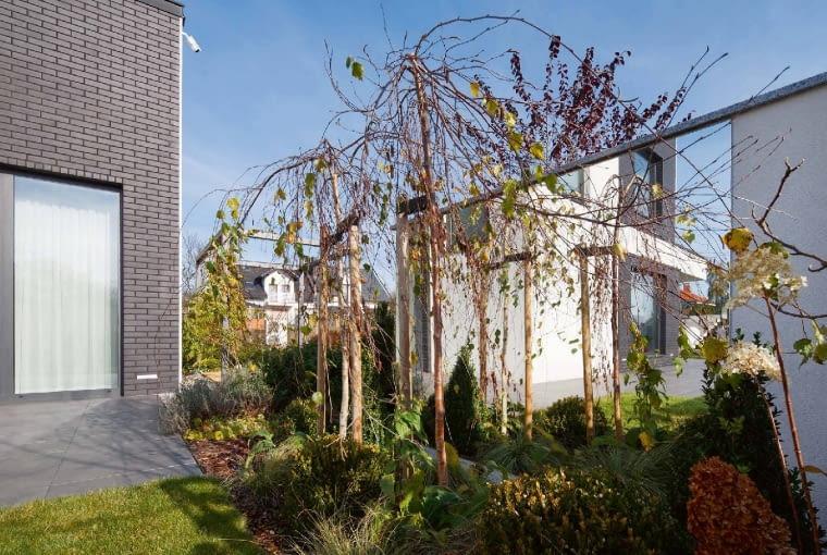 Na końcu pełnego murowanego ogrodzenia zamontowano sporych rozmiarów lustro. Odbijają się w nim rośliny i niebo, powiększając optycznie deficytową w tym miejscu przestrzeń wokół budynku
