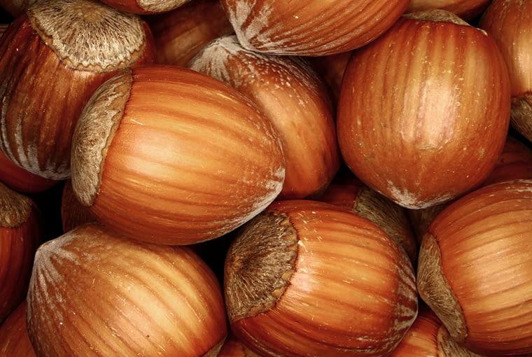 Orzechy są bardzo wartościowe, zawierają tłuszcze roślinne, minerały i witaminy