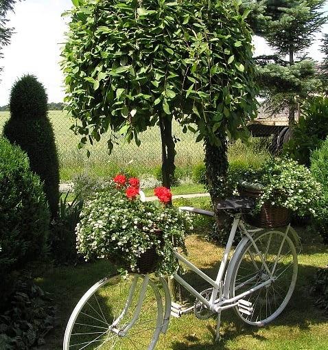 doniczka, rower, ogród