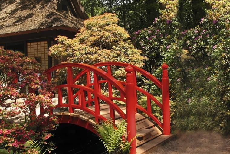 ogród w stylu shakkei