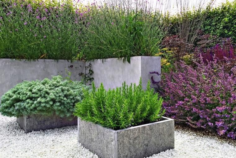 Proste betonowe donice podkreślają urodę roślin.