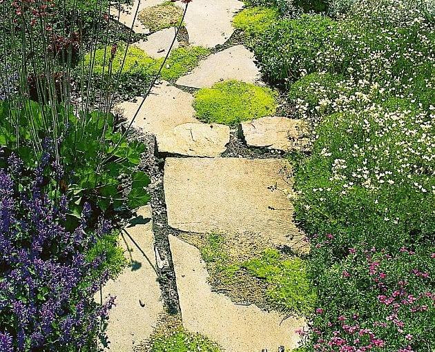 ścieżki w ogrodzie, nawierzchnia w ogrodzie, kamień, kamienna ścieżka