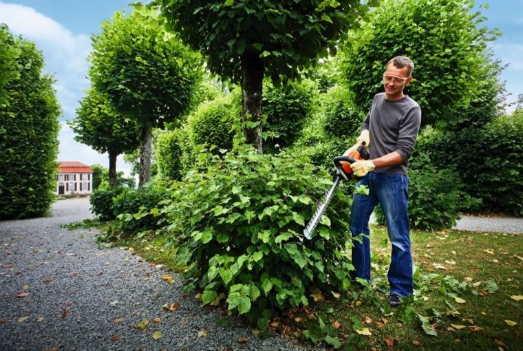Dzięki poręcznym nożycom do żywopłotu Stihl HSA 66 bez większego trudu utrzymamy w ryzach nasze krzewy ok. 1000 zł