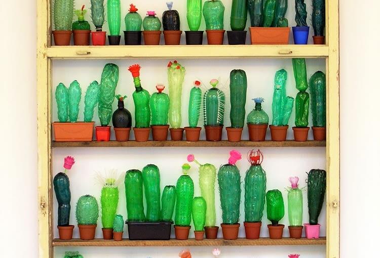 Czy wiedzieliście, że butelki PET są tak podobne do kaktusów? Więcej na: www.kurbits.nu