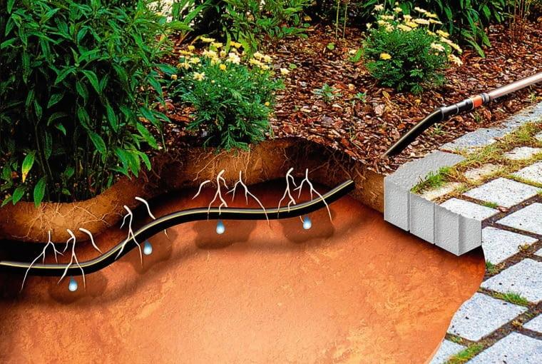 Linia kroplująca - przewód polietylenowy z umieszczonymi wewnątrz wkładkami dozującymi wypływającą wodę. Ze względów estetycznych można obsypać przewód ziemią czy korą (na gł. 2-3 cm). Podlewamy nim żywopłot (układając go wzdłuż), rabaty i warzywniki (pokrywając je siecią równoległych przewodów co 30-40 cm).
