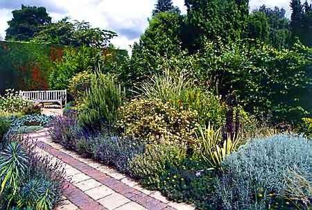 Rabaty bylinowe nie muszą być trudne w utrzymaniu. Wystarczy posadzić rośliny niewymagające codziennego podlewania - wilczomlecze, rozchodniki i trawy ozdobne.