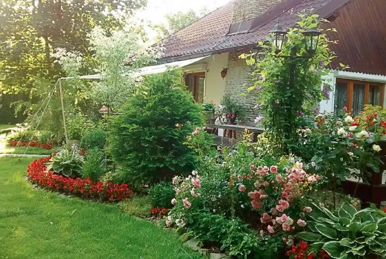 Dom w objęciach roślin nabiera nowego, romantycznego wyrazu. W jego najbliższym otoczeniu posadziłam moje ukochane róże - pnące i wielkokwiatowe. Ich widok cieszy mnie od rana do wieczora.