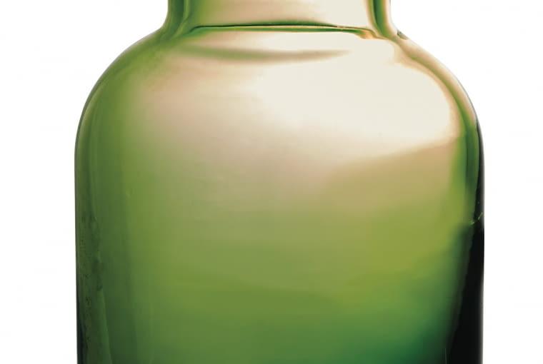 TK Maxx: Zielony wazon, 69,99 zł