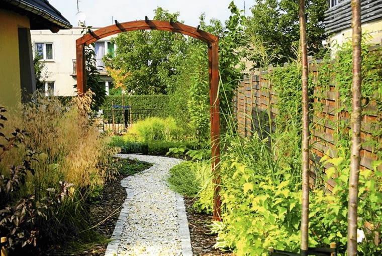 Projekt ogrodu w nowym stylu. Po drewnianej pergoli wspina się hortensja pnąca