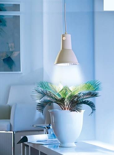 lampa dla roślin, oświetlenie, sztuczne słońce