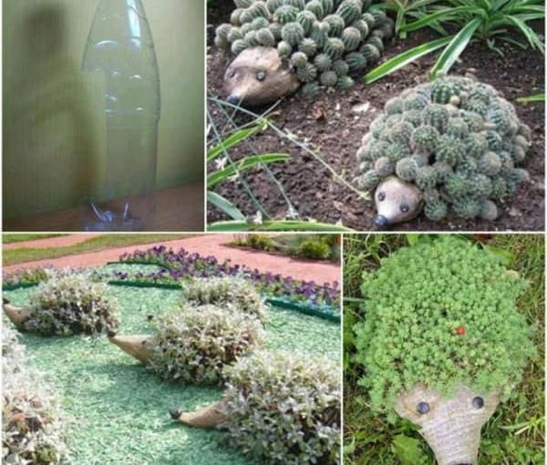 Teraz pomysł dla tych, którzy lubią wprowadzić trochę zabawy do ogrodu. Z butelek można zrobić doniczki, które do złudzenia przypominają jeżyki. Więcej na: www.1001gardens.org