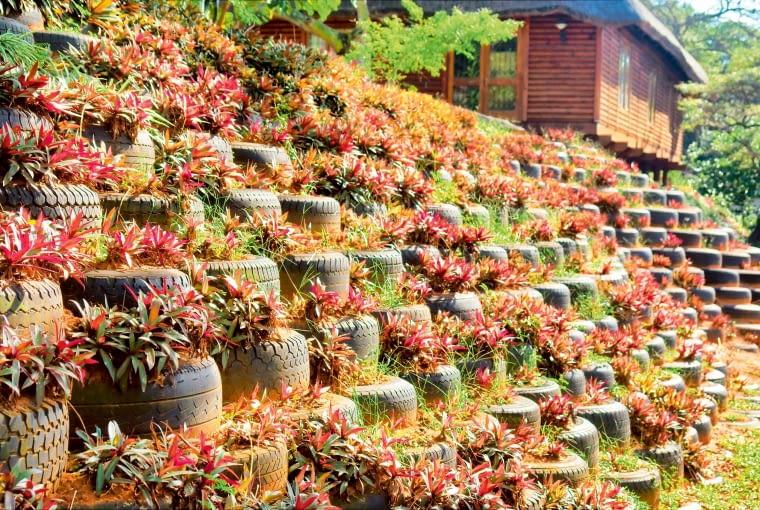 Opony jako umocnienie skarpy wterenie odużej różnicy poziomów. Warto je obsadzić roślinami płożącymi iozwieszających się pędach.
