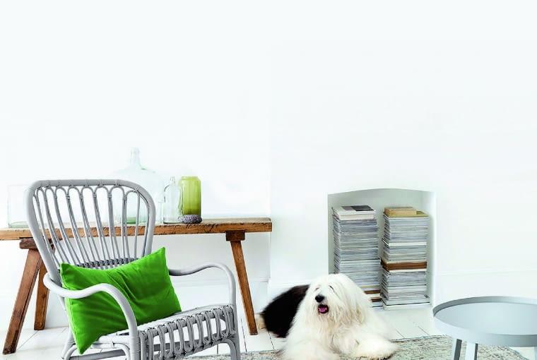 Białe, zmywalne farby o dobrych właściwościach można z powodzeniem stosować nie tylko w pokojach, ale też w pomieszczeniach, w których ściany narażone są na zabrudzenie - np. przedpokojach, kuchniach
