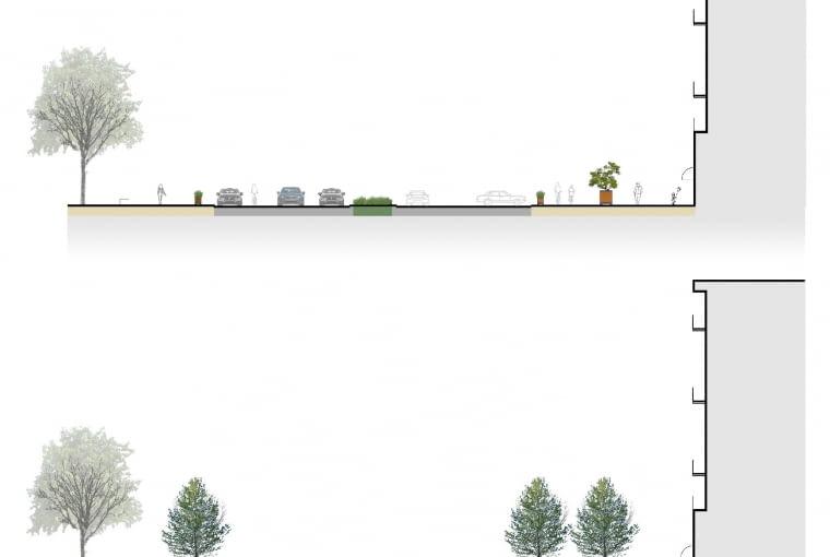 Projekt nowej zieleni na ulicy Świętokrzyskiej w Warszawie - przekrój istniejący i projektowany